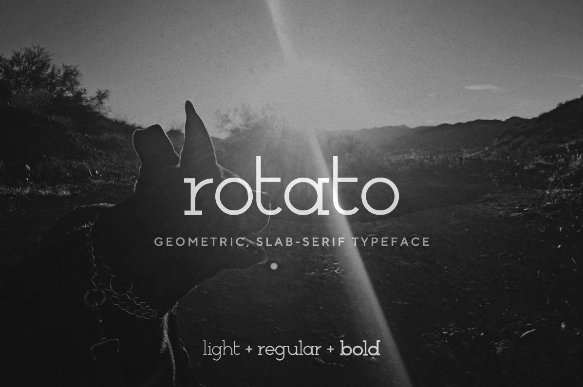 Rotato - a modern, geometric slab-serif font   VIP Graphics