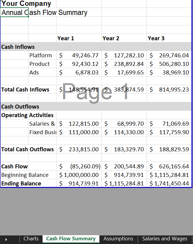 Cash Flow Summary - Marketplace Financial Model Template | VIP.graphics