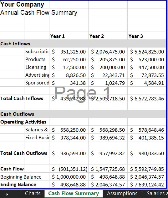 Cash Flow Summary - Software SaaS Financial Model Template | VIP.graphics